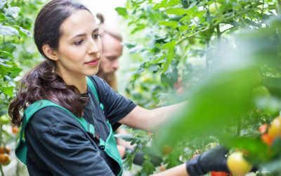 SGS Crop Science News: April 2021
